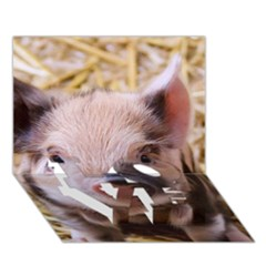 Sweet Piglet LOVE Bottom 3D Greeting Card (7x5)