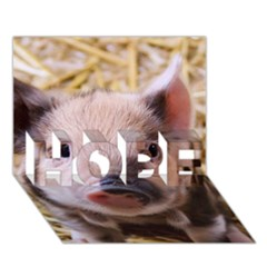 Sweet Piglet HOPE 3D Greeting Card (7x5)