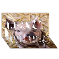 Sweet Piglet Best Wish 3d Greeting Card (8x4)