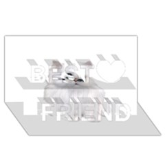 White Persian Cat Clipart Best Friends 3d Greeting Card (8x4)