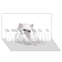 White Persian Cat Clipart Best Bro 3d Greeting Card (8x4)