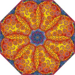 Patterned Butterfly Hook Handle Umbrellas (large)