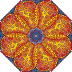 Patterned Butterfly Hook Handle Umbrellas (small)
