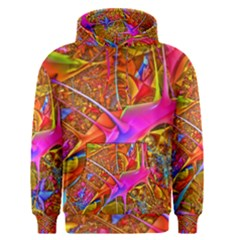 Biology 101 Abstract Men s Pullover Hoodies
