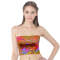 Biology 101 Abstract Women s Tube Tops
