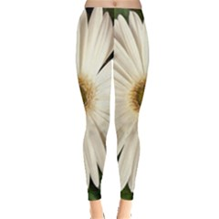 Daisyc Women s Leggings