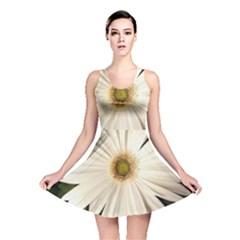 Daisyc Reversible Skater Dresses