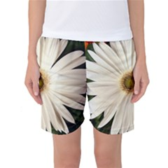 Daisyc Women s Basketball Shorts