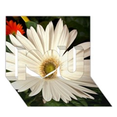Daisyc I Love You 3D Greeting Card (7x5)