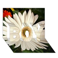 Daisyc Boy 3d Greeting Card (7x5)