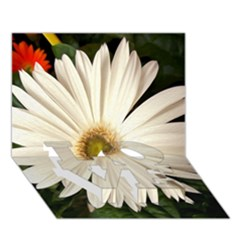Daisyc Love Bottom 3d Greeting Card (7x5)