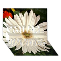 Daisyc YOU ARE INVITED 3D Greeting Card (7x5)