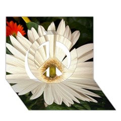 Daisyc Peace Sign 3D Greeting Card (7x5)