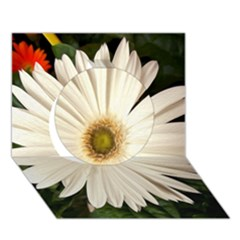 Daisyc Circle 3D Greeting Card (7x5)