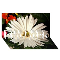 Daisyc ENGAGED 3D Greeting Card (8x4)
