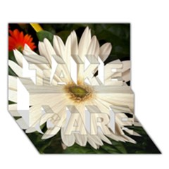 Daisyc TAKE CARE 3D Greeting Card (7x5)
