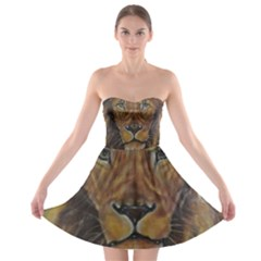Cecil The African Lion Strapless Bra Top Dress
