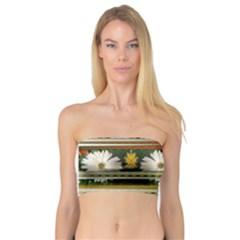 Pattern Flower Women s Bandeau Tops