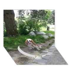 Cav Sitting Circle Bottom 3D Greeting Card (7x5)