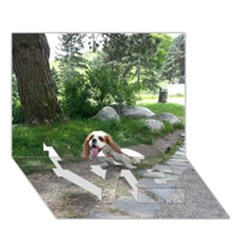 Cav Sitting LOVE Bottom 3D Greeting Card (7x5)