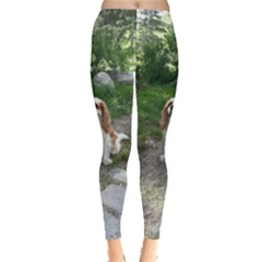 Cav Sitting Women s Leggings