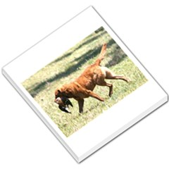 Chesapeake Bay Retriever Retrieving Small Memo Pads