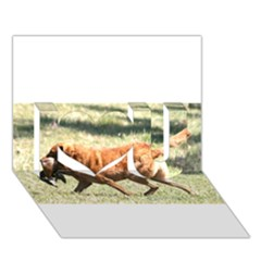 Chesapeake Bay Retriever Retrieving I Love You 3D Greeting Card (7x5)