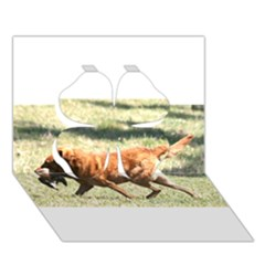 Chesapeake Bay Retriever Retrieving Clover 3D Greeting Card (7x5)