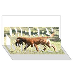 Chesapeake Bay Retriever Retrieving Merry Xmas 3D Greeting Card (8x4)