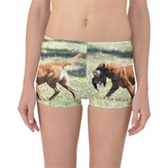 Chesapeake Bay Retriever Retrieving Boyleg Bikini Bottoms