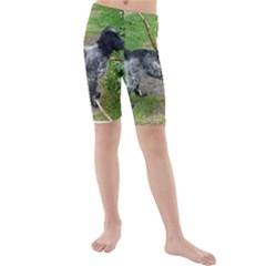 Black Roan English Cocker Spaniel Full 2 Kid s swimwear