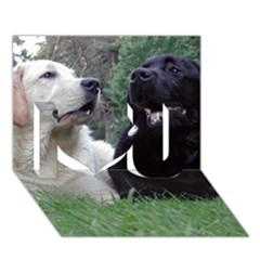 2 Labs I Love You 3D Greeting Card (7x5)