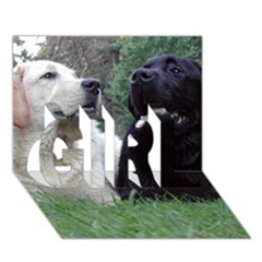 2 Labs GIRL 3D Greeting Card (7x5)