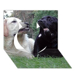 2 Labs Heart 3D Greeting Card (7x5)
