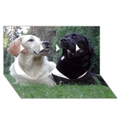 2 Labs Twin Hearts 3D Greeting Card (8x4)