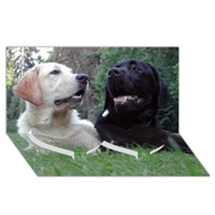 2 Labs Twin Heart Bottom 3D Greeting Card (8x4)