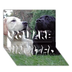 2 Labs YOU ARE INVITED 3D Greeting Card (7x5)