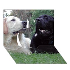 2 Labs Apple 3D Greeting Card (7x5)