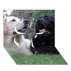 2 Labs Clover 3D Greeting Card (7x5)