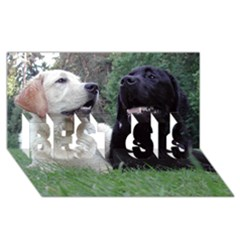 2 Labs BEST SIS 3D Greeting Card (8x4)