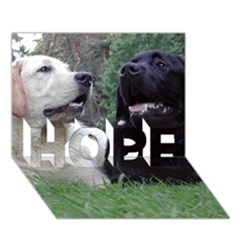 2 Labs HOPE 3D Greeting Card (7x5)