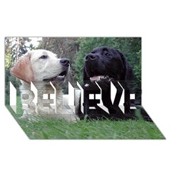 2 Labs BELIEVE 3D Greeting Card (8x4)