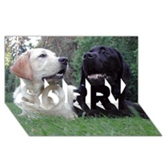2 Labs SORRY 3D Greeting Card (8x4)