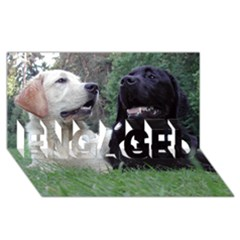 2 Labs ENGAGED 3D Greeting Card (8x4)