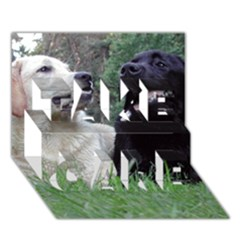 2 Labs TAKE CARE 3D Greeting Card (7x5)