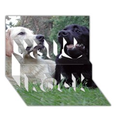 2 Labs You Rock 3D Greeting Card (7x5)