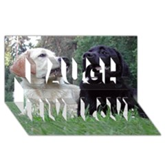 2 Labs Laugh Live Love 3D Greeting Card (8x4)