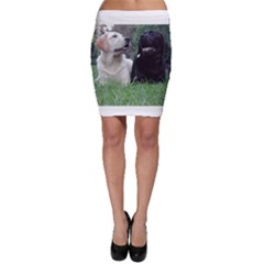 2 Labs Bodycon Skirts