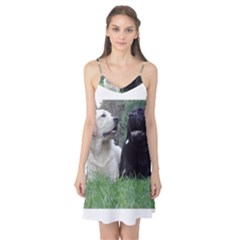 2 Labs Camis Nightgown