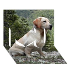 Yellow Lab Sitting I Love You 3D Greeting Card (7x5)